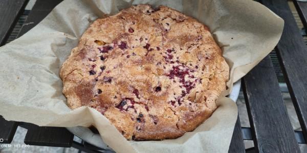 Sommerkuchen - einfach, schnell und lecker :-)