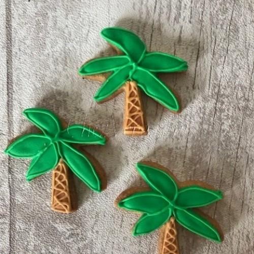 Cookie Cutter Palm