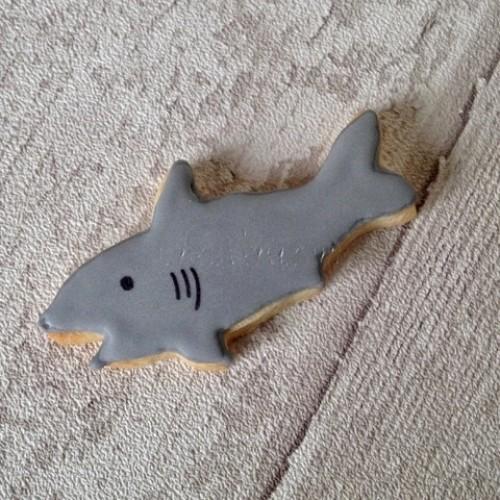 Cookie Cutter Shark