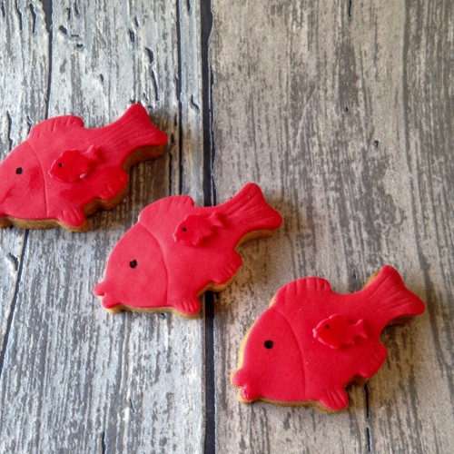 Cookie Cutter Fish – mini